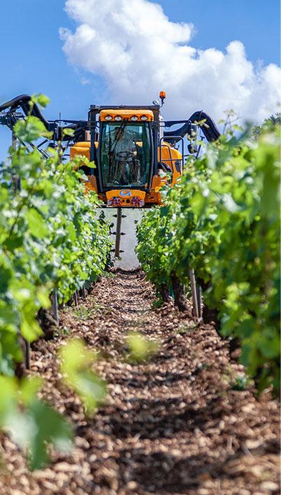 2PERSONNEL®, nuestra experiencia: agroindustria